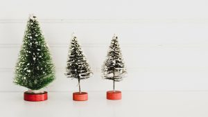 Photo of three small artificial Christmas trees