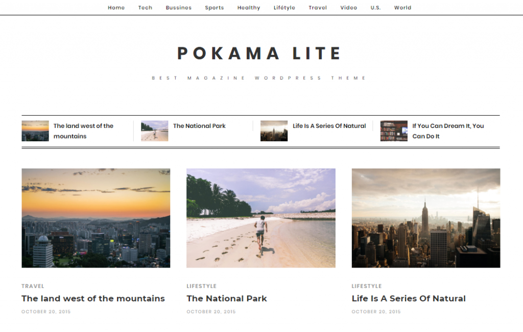 Screenshot of the Pokama Lite WordPress theme