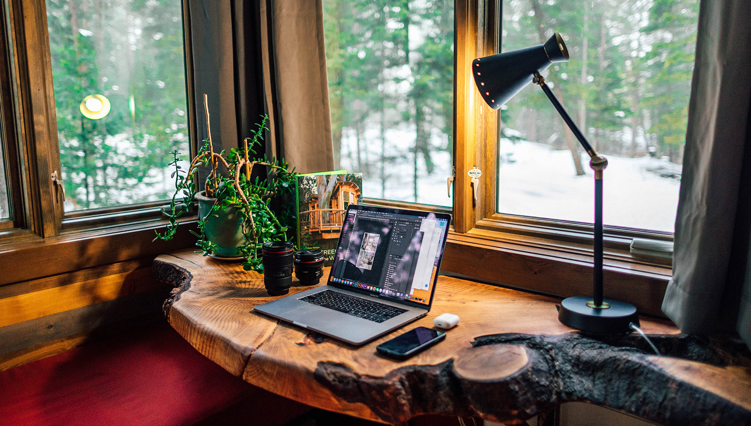 A desk made from a live edge of wood with a laptop, house plant, and lamp