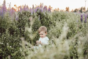 a toddler sits in a field of flowers
