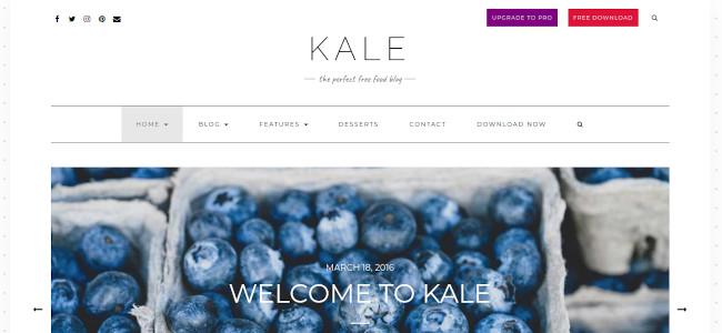 Screenshot of the Kale WordPress theme