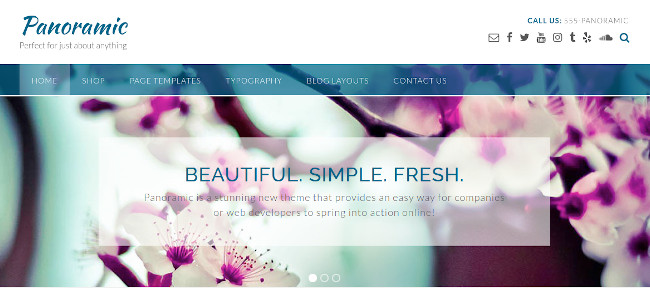 Screenshot of the Panoramic WordPress theme