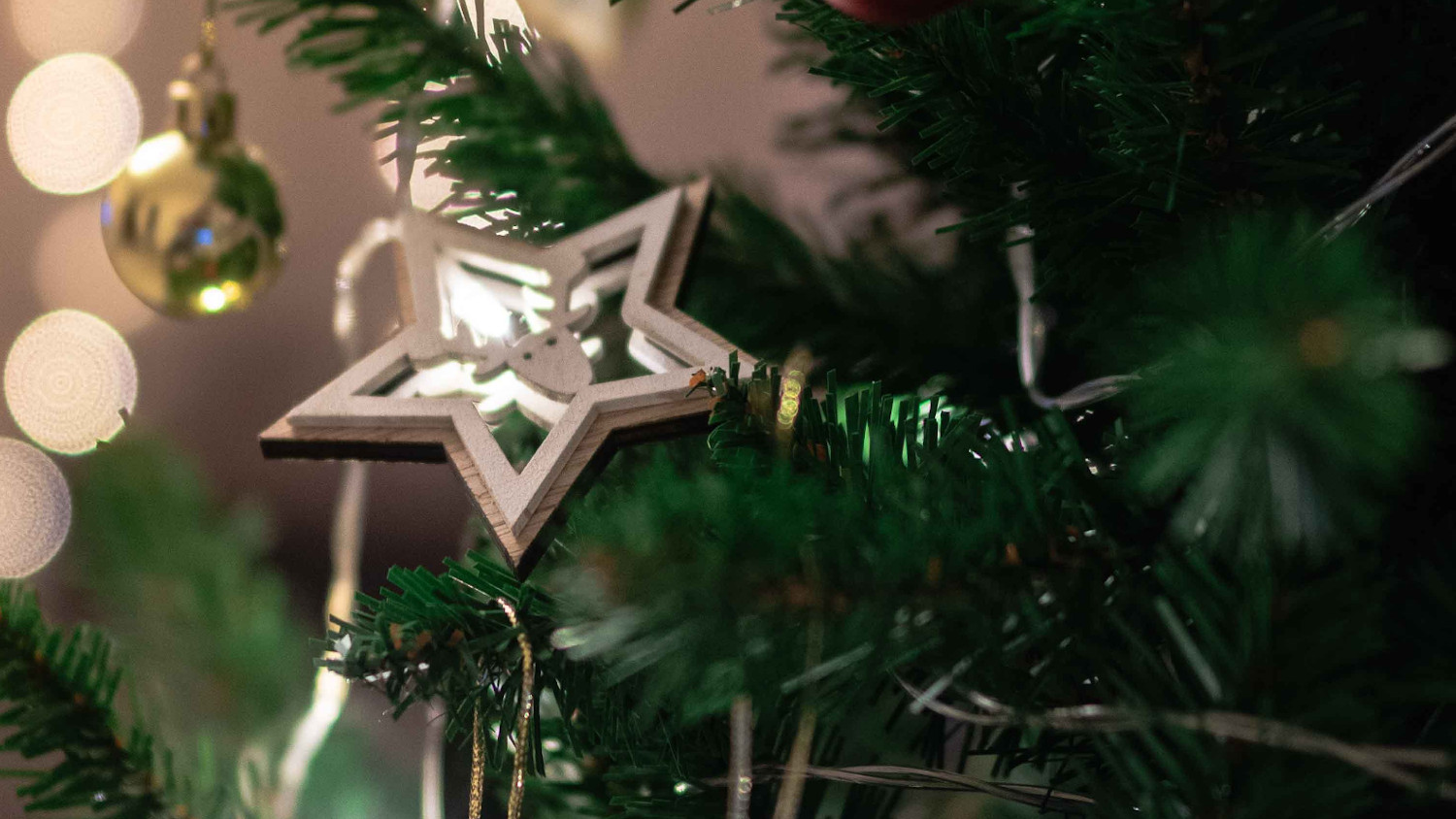 A star ornament on a Christmas Tree