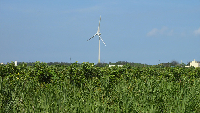 Photo of one of the wind turbines on the western coast of Taiwan.