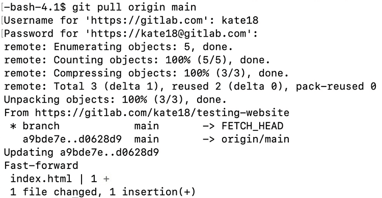 Screenshot of the results of typing in git pull origin main