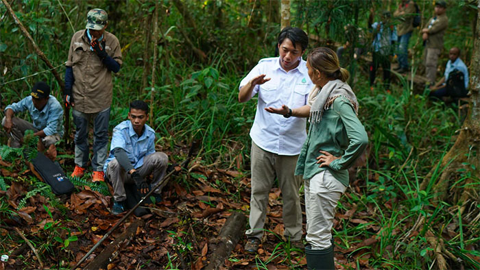 Scientists and workers work in a Borneo peatland.